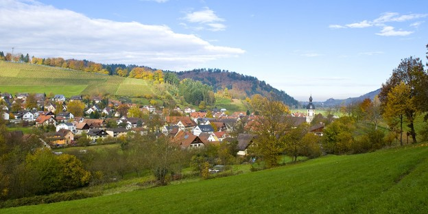 Blick auf den Dorfkern